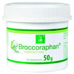 Broccoraphan - kiełki brokułów